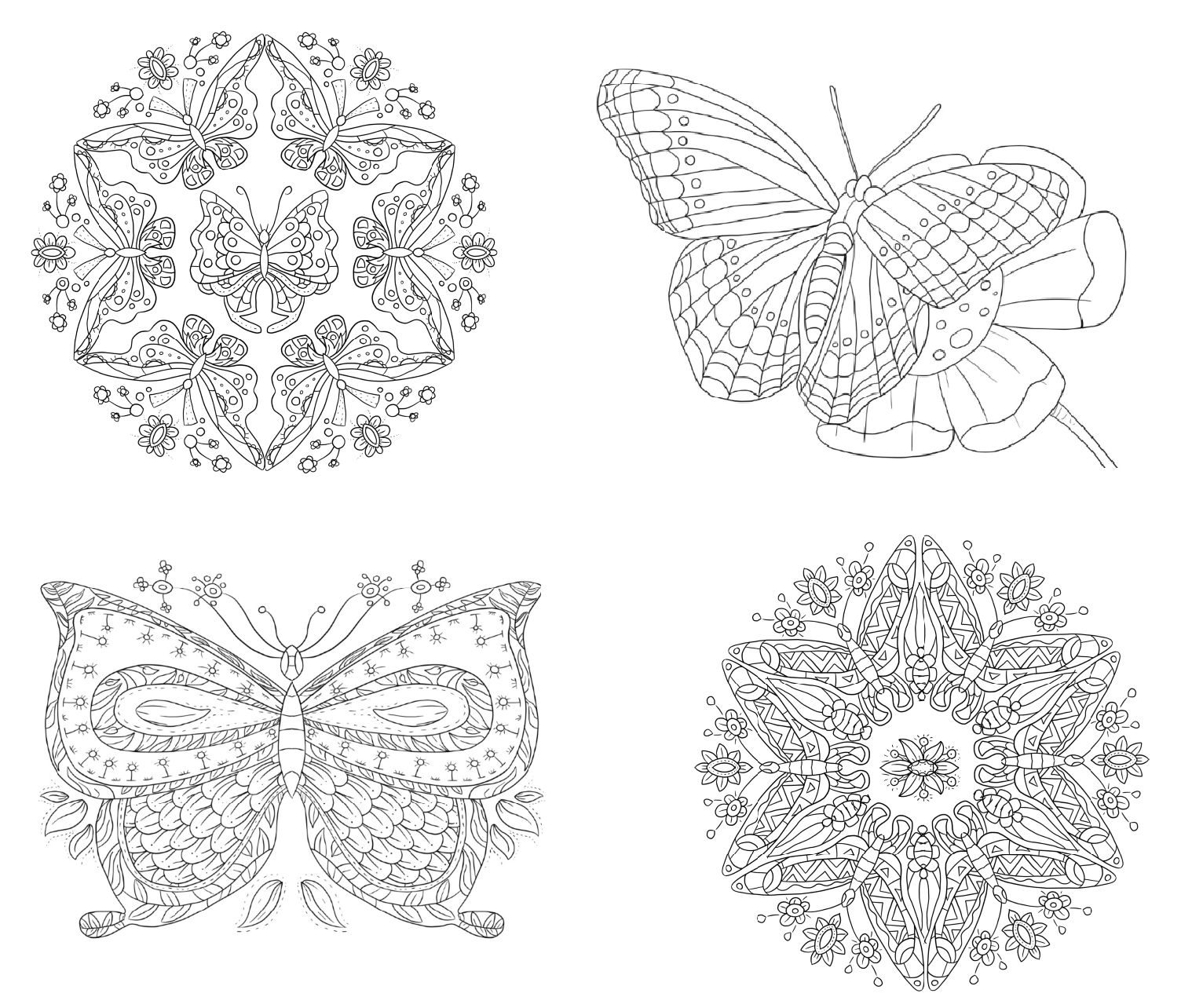 Free beautiful butterfly coloring pages boom coloring for Beautiful butterfly coloring pages